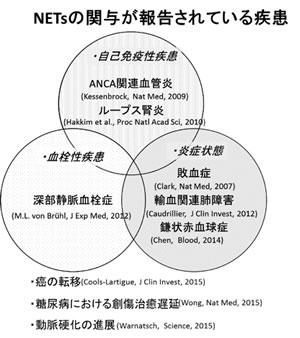 慶應大学病院総合診療科